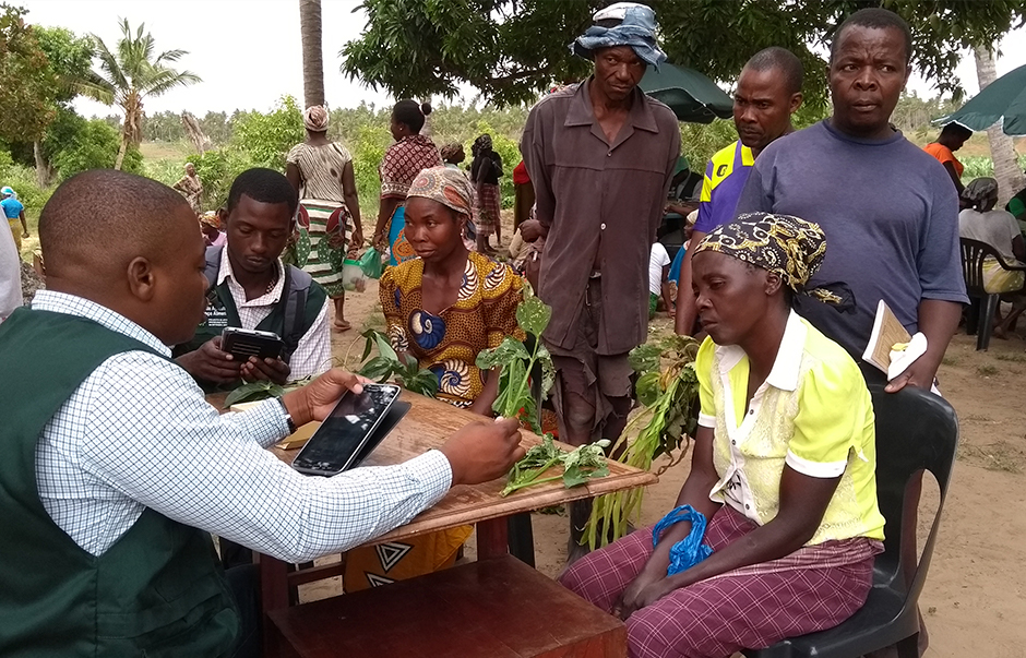 Farmers attending a plant clinic in Africa